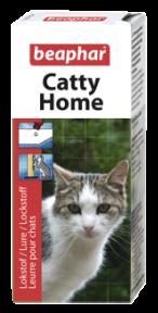 Treino para gatos